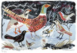 Mark Hearld - Pheasant